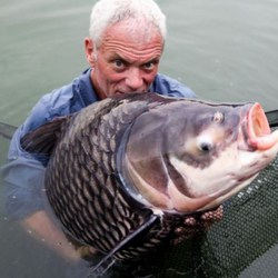 Carpfishing Pesca de carpa gigante kit de supervivencia cómo pescar carpas material de pesca