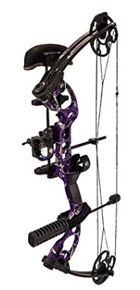 best compound bows - quest radical