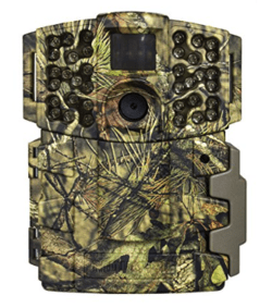 best trail camera - moultrie